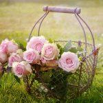 Ein Korb voller Rosen